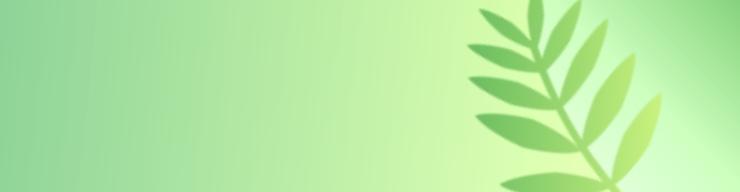 A simple fern adorns a green background