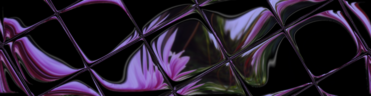 Reflective tile adds beauty to the swirled dahlias