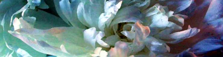 Peony enhanced with tints, watercolors and sunlight