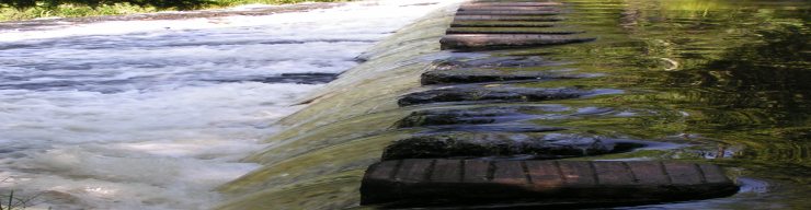 Stepping stones crossing the rushing water